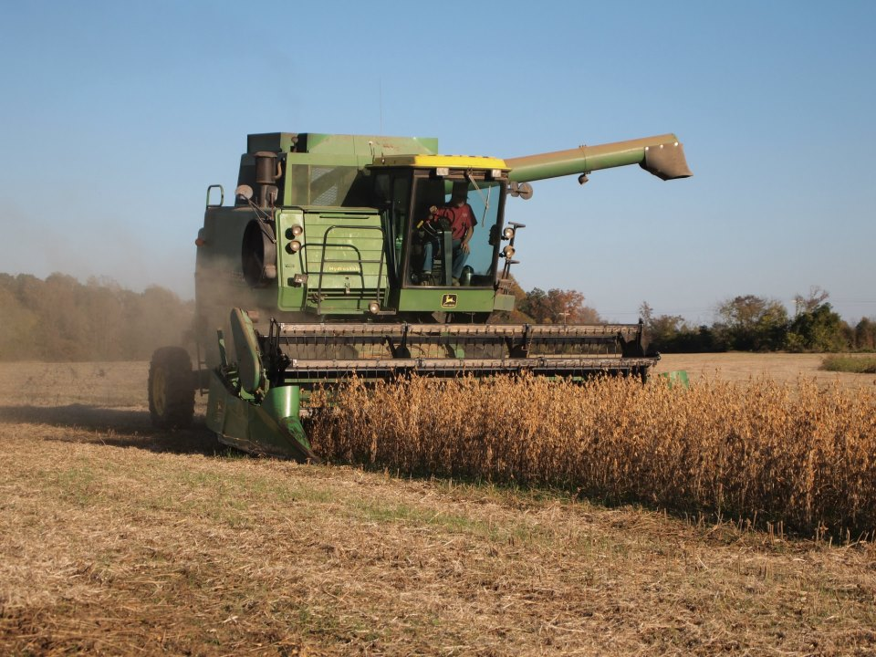 soybean harvesting at Leavelle Farms with John Deere combine
