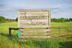 Leavelle Farms